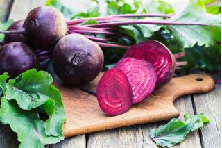 "Beetroot ""Betina"" - 500 seeds"