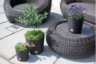 Round flower pot - Rato - 20 cm - White